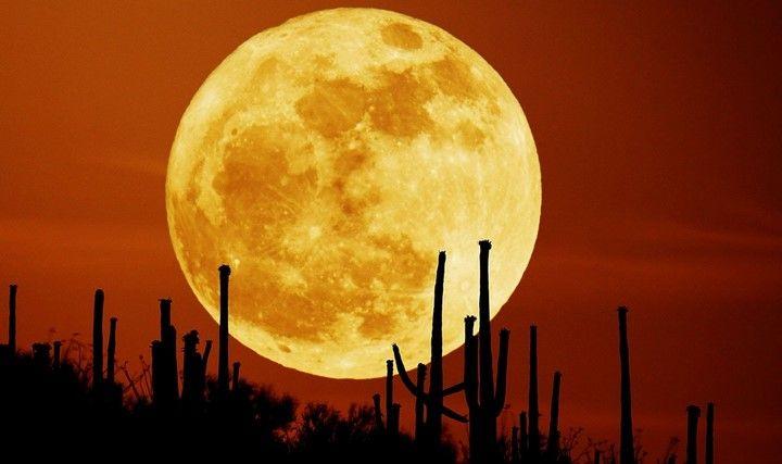 Supermoon Terbesar Dalam 70 tahun Akan Datang Pada Tanggal 14 November