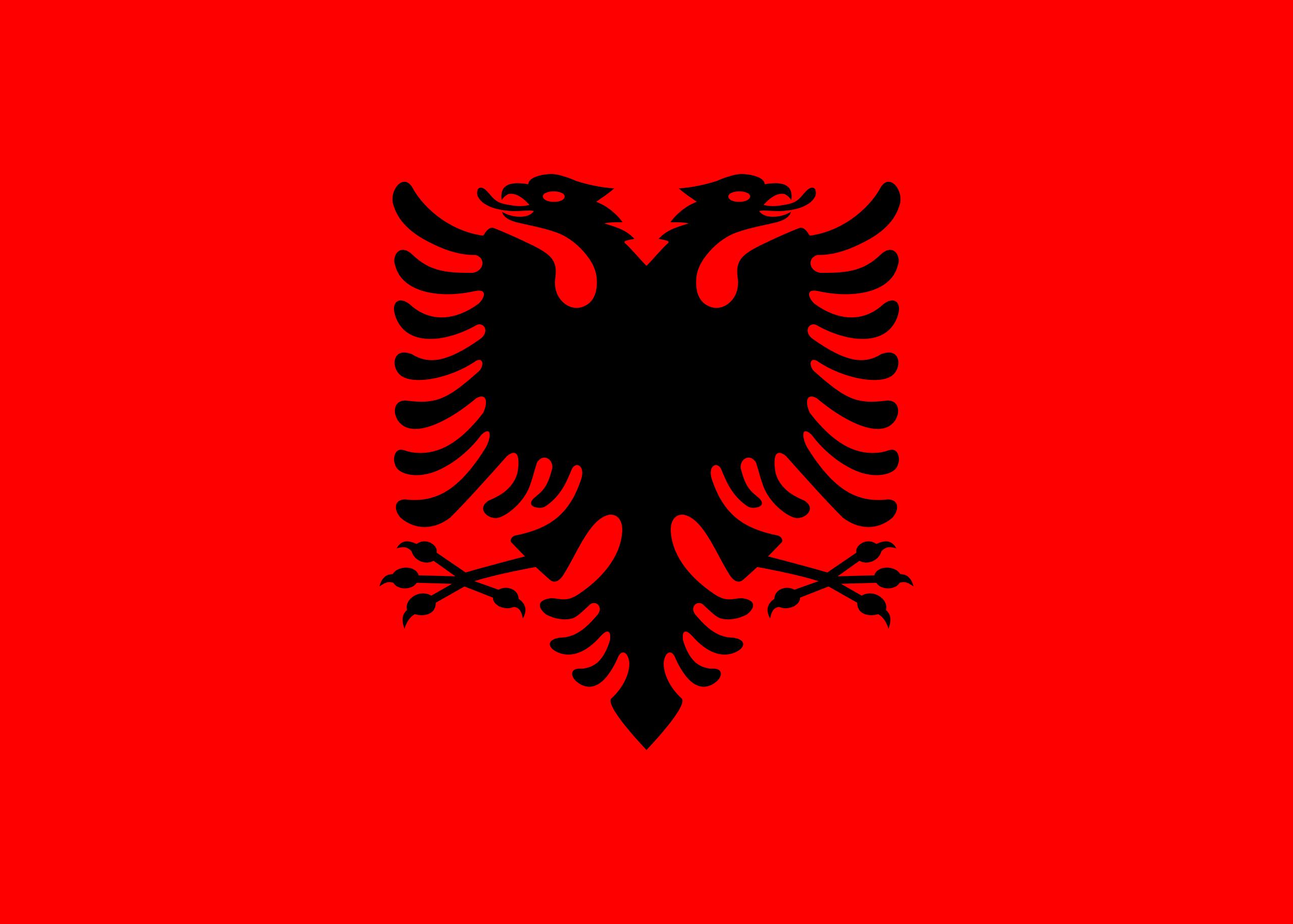 Flag Of Albania Albania Wikipedia Albania Flag Albanian Flag Flag [ 1829 x 2560 Pixel ]