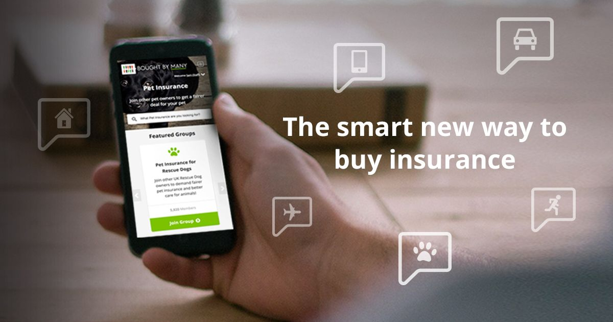 Bought by many insurance made social insurance pet