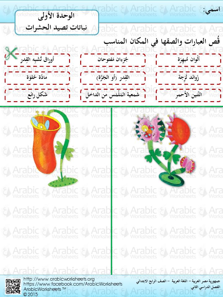 Pin On Egyptian Curriculum Of Arabic Language