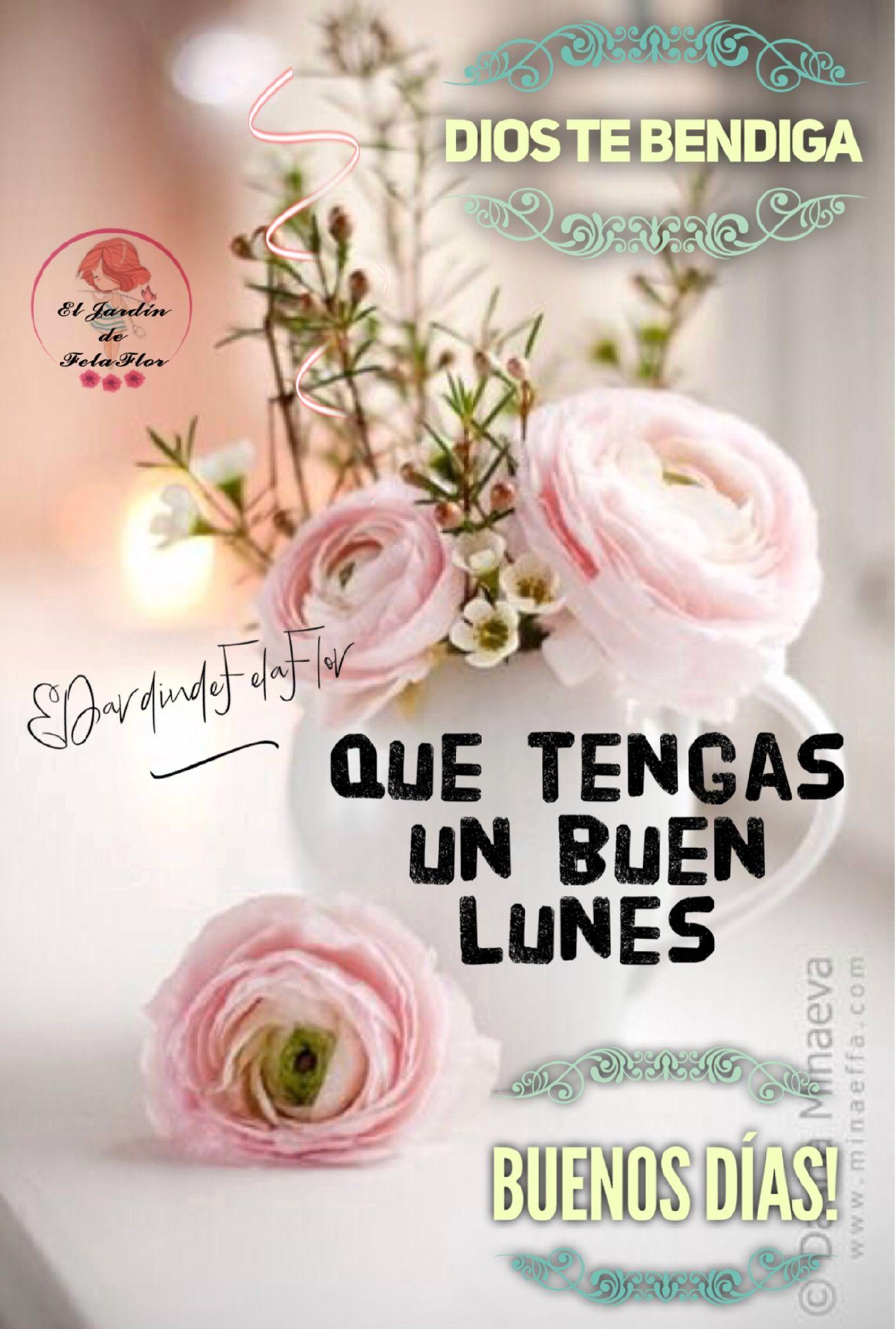 Bonito Lunes Mi Amor pin de el jardín de fela flor en el jardín de fela flor