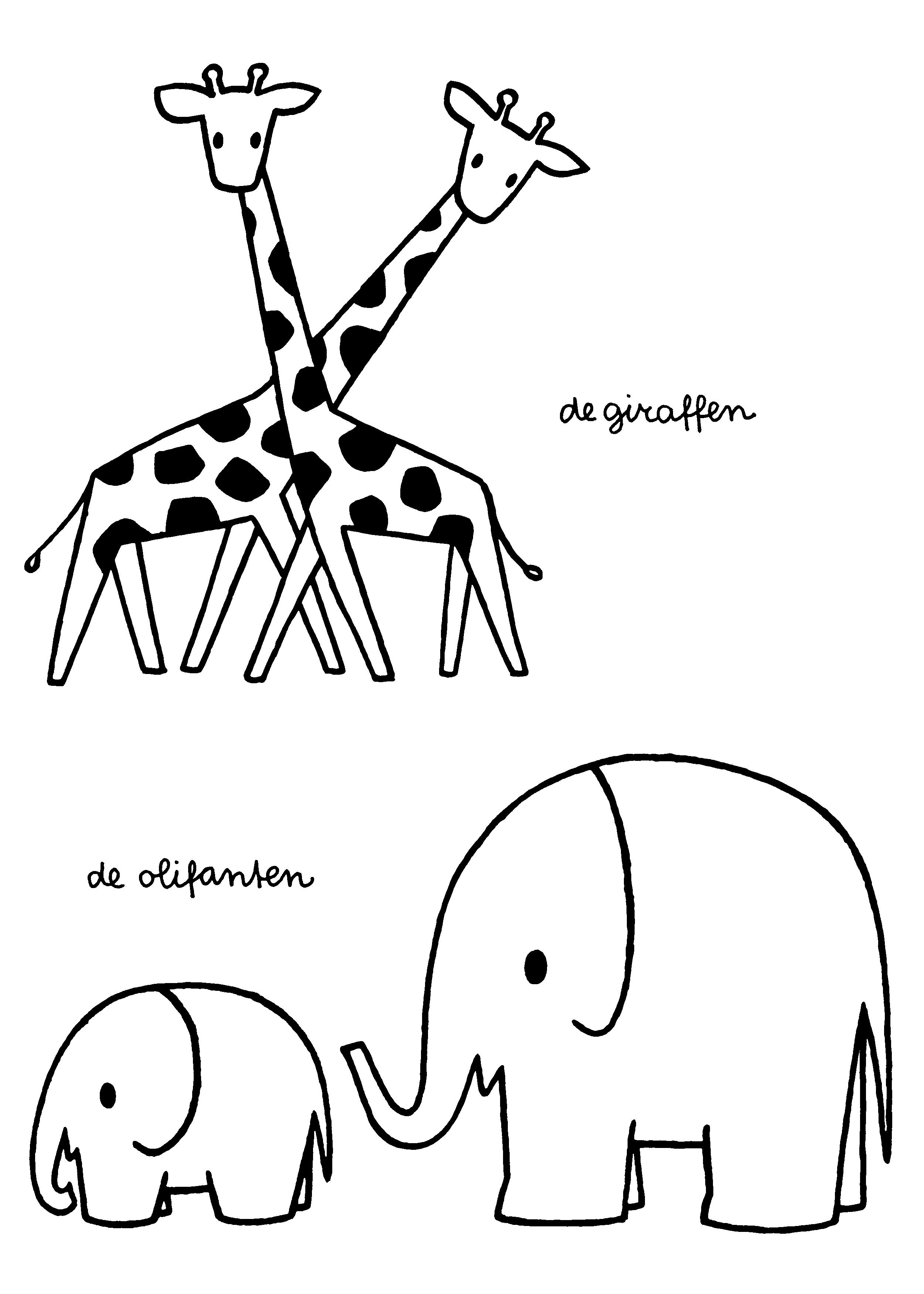 De Giraffen De Olifanten