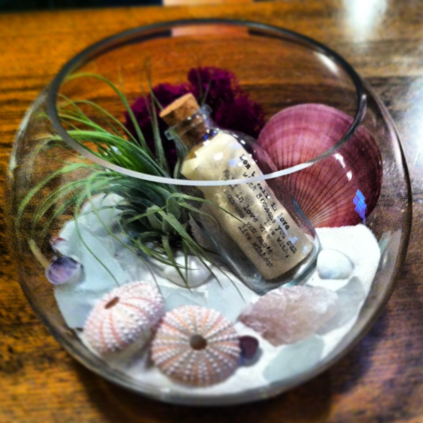 A Love Note Terrarium For Your Valentine )