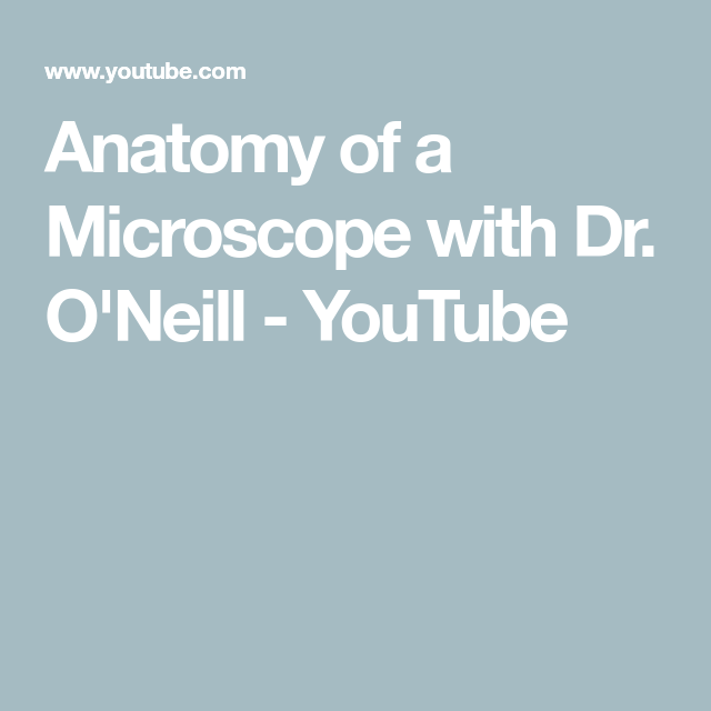 Anatomy Of A Microscope With Dr Oneill Youtube Microscopes