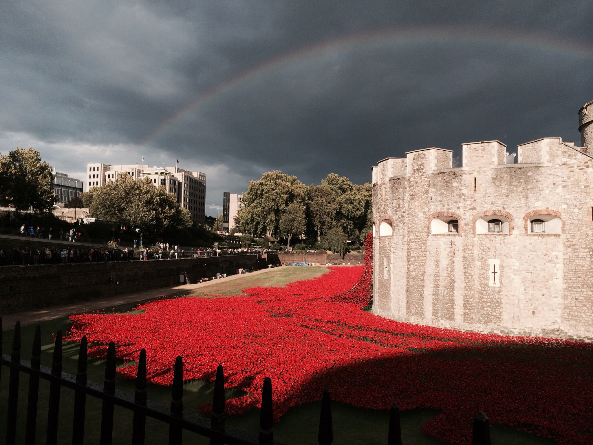 Rainbow Storm Over Tower Of London World War 1 Poppies My Heart