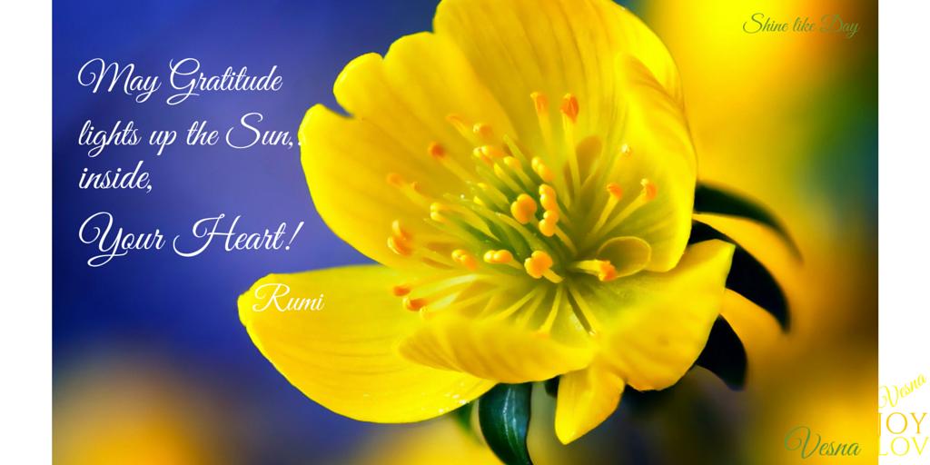 May Gratitude Lights Up The Sun Inside My Yo Heart