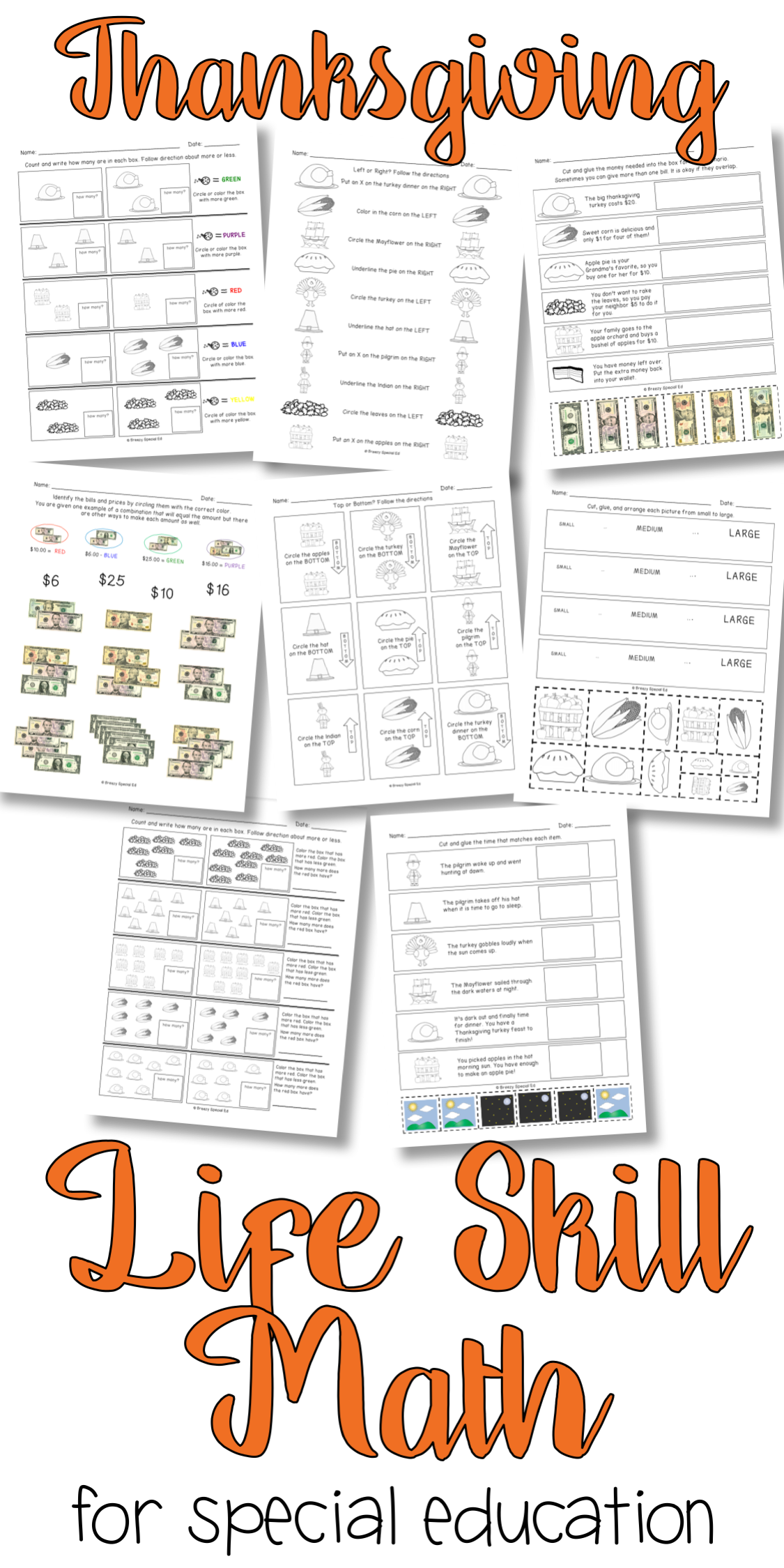 Differentiated Life Skill Math Pack Thanksgiving Special