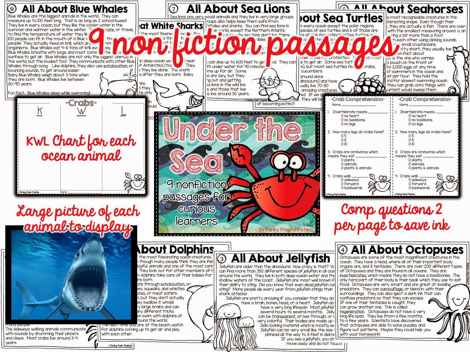 Under The Sea Non Fiction Passages For Curious Learners 9