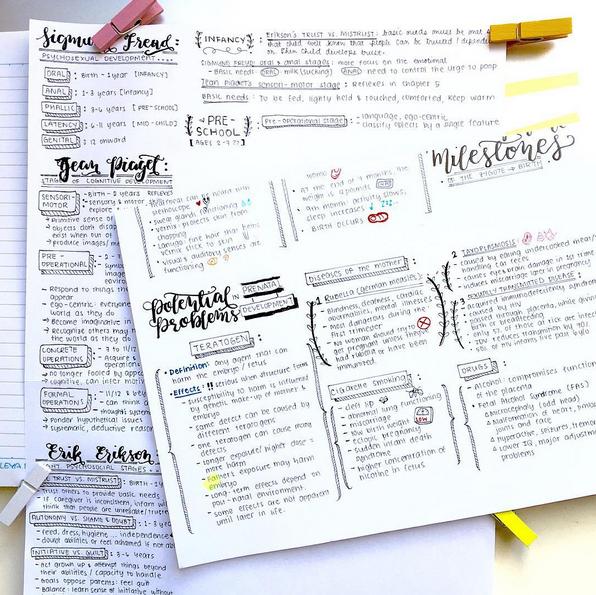 kimching developmental psychology notes take d planner  kimching232 developmental psychology notes take 2