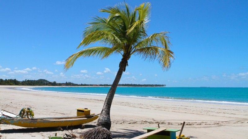 tamandare praias ferias passeios pernambuco paraíso
