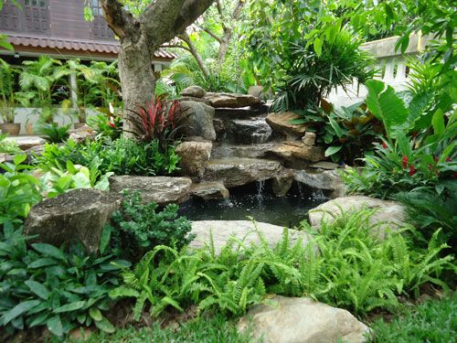 Garden landscape serenity of water pinterest thai for Outdoor tropical fish pond
