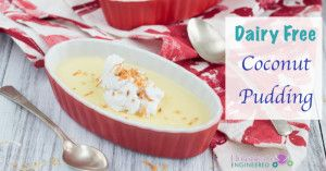 Coconut Pudding Recipe Dairy Free Coconut Pudding Paleo Sweets