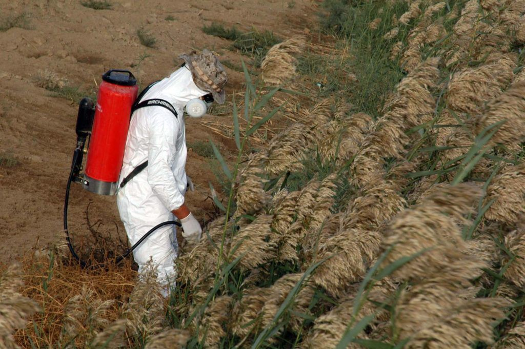 Stop Poisonous Pesticide Runoff (With images) Pesticide
