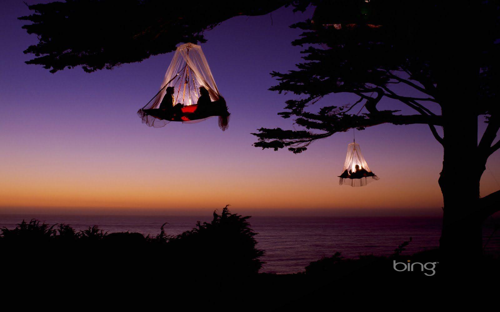 Bing Tree Camping Tree Tent Hanging Tent