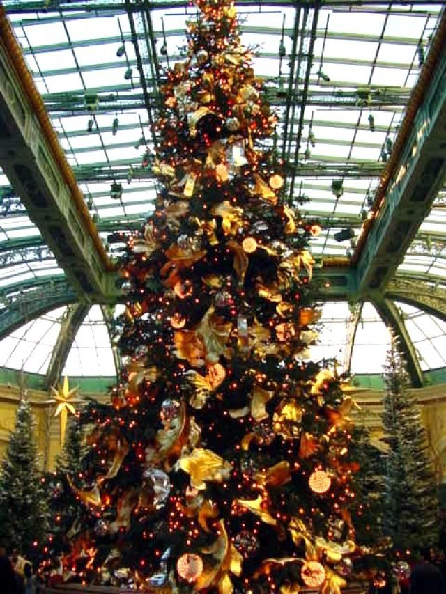 Las Vegas Christmas Weather.December In Las Vegas Weather What To Pack And What To