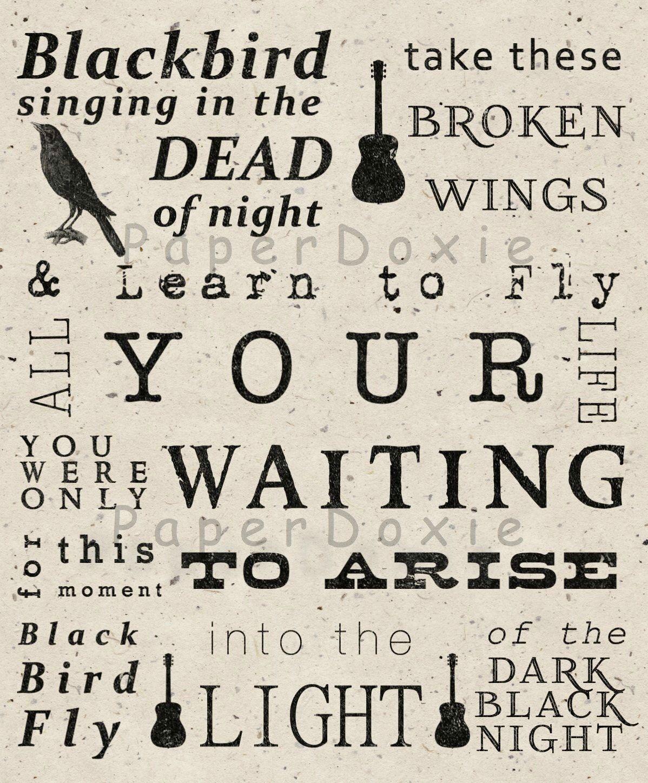 The Beatles - Blackbird Lyrics | MetroLyrics