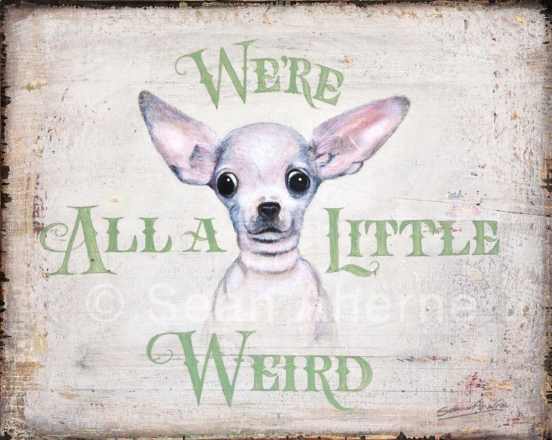 Smooth Chihuahua Dog Shabby Chic Wooden Sign By Sean Aherne Artist For Dog Lover Ebay Chihuahua Dogs Cute Chihuahua Chihuahua Love
