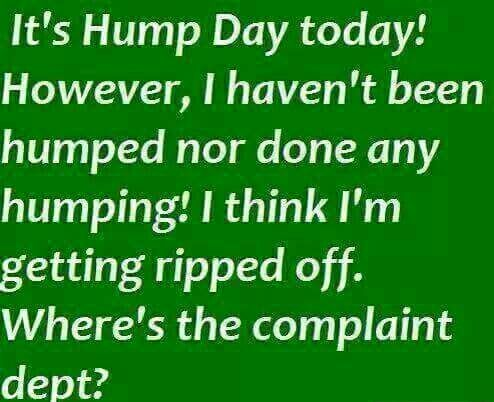 Hump Day Good Morning Quotes Hump Day Humor Hump Day Quotes