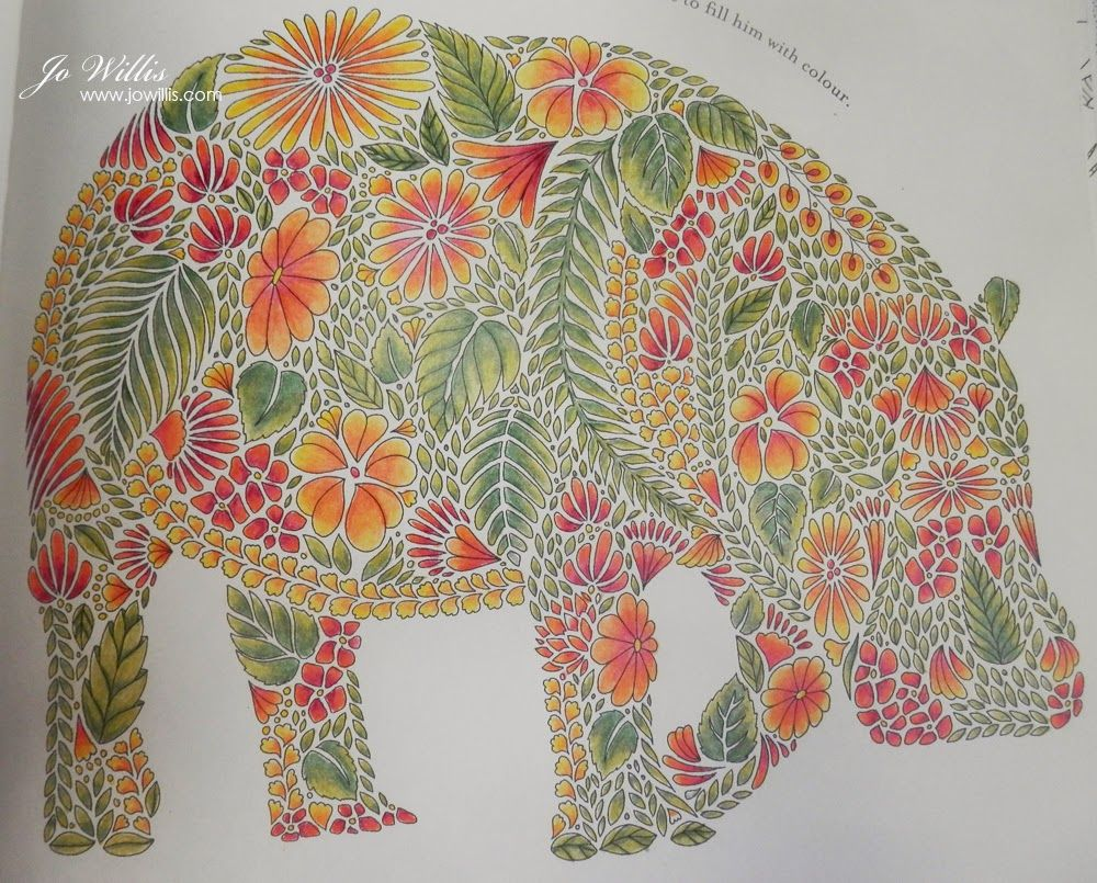 Coloring book animal kingdom - Millie Marotta Animal Kingdom Colouring