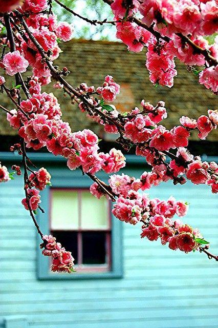 (Beautiful Colours) | via Tumblr