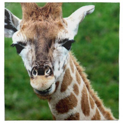 Giraffe Photo  Set of Four Napkins