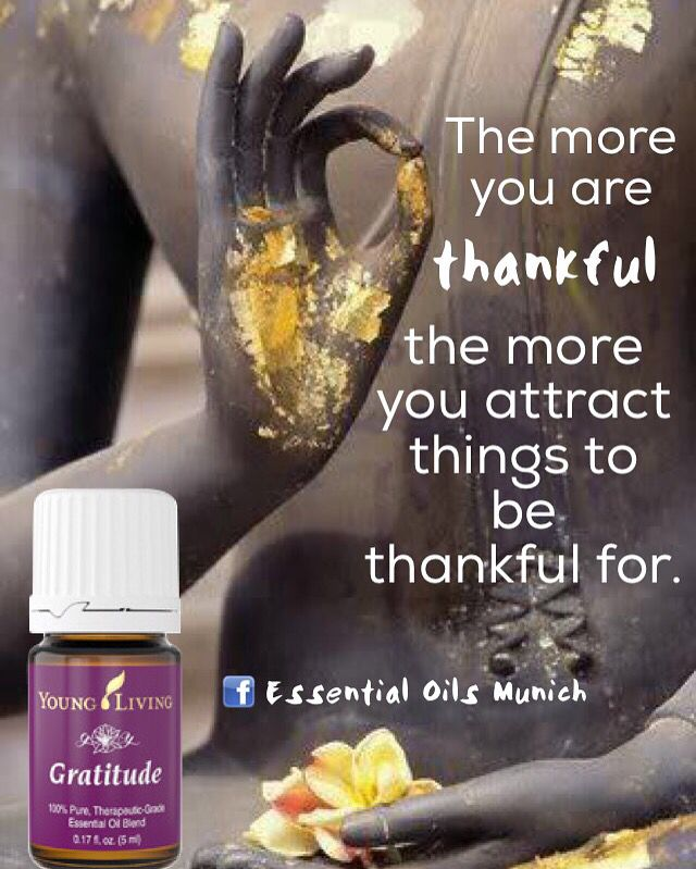 #Gratitude #essentialoilblend #buddha #zen #mudra mudras #lawofattraction   ➡️ www.facebook.com/EssentialOilsMUC   Get yours today Online bestellen  Ordena aquí  www.bit.ly/YL_EssentialOilsMunich   #YoungLiving #YoungLivingEssentialOils #healthy #yleo #myyl #essentialoilsmunich #wellness #garyyoung #EssentialOils #essentialoilspa #spa #aromaterapia #aromatherapy
