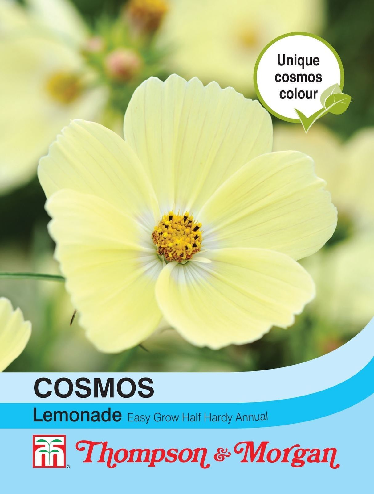 Details about Thompson & Cosmos Lemonade 30
