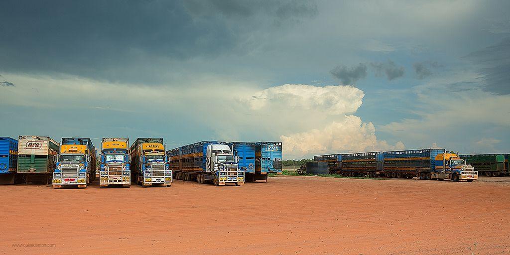 Road Trains at Noonamah | by Louise Denton