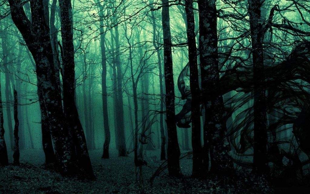 Dark Forest Desktop Backgrounds Wallpapers Forest Wallpaper Haunted Forest Gothic Wallpaper