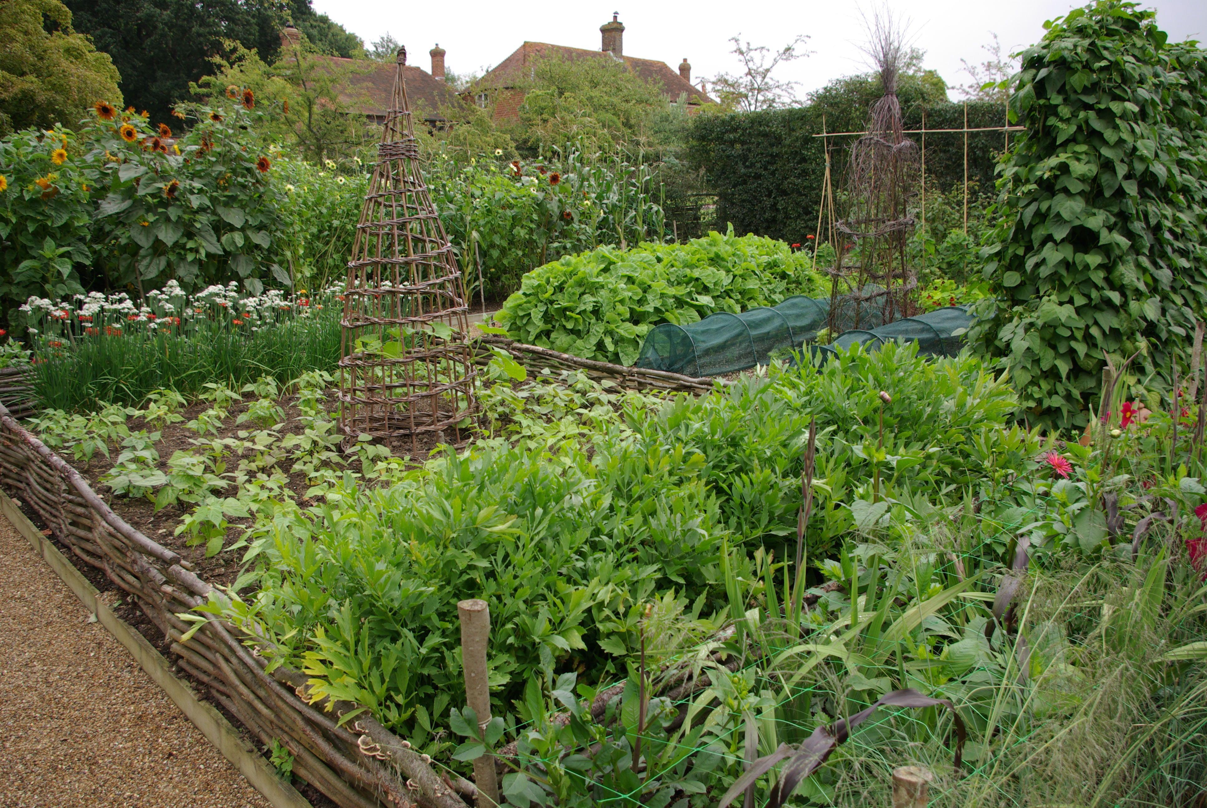 Sarah Raven S Kitchen Garden Kitchen Garden