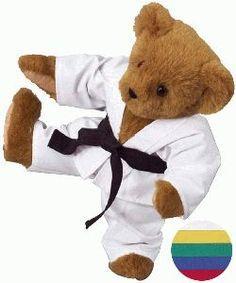 Martial Arts Bear
