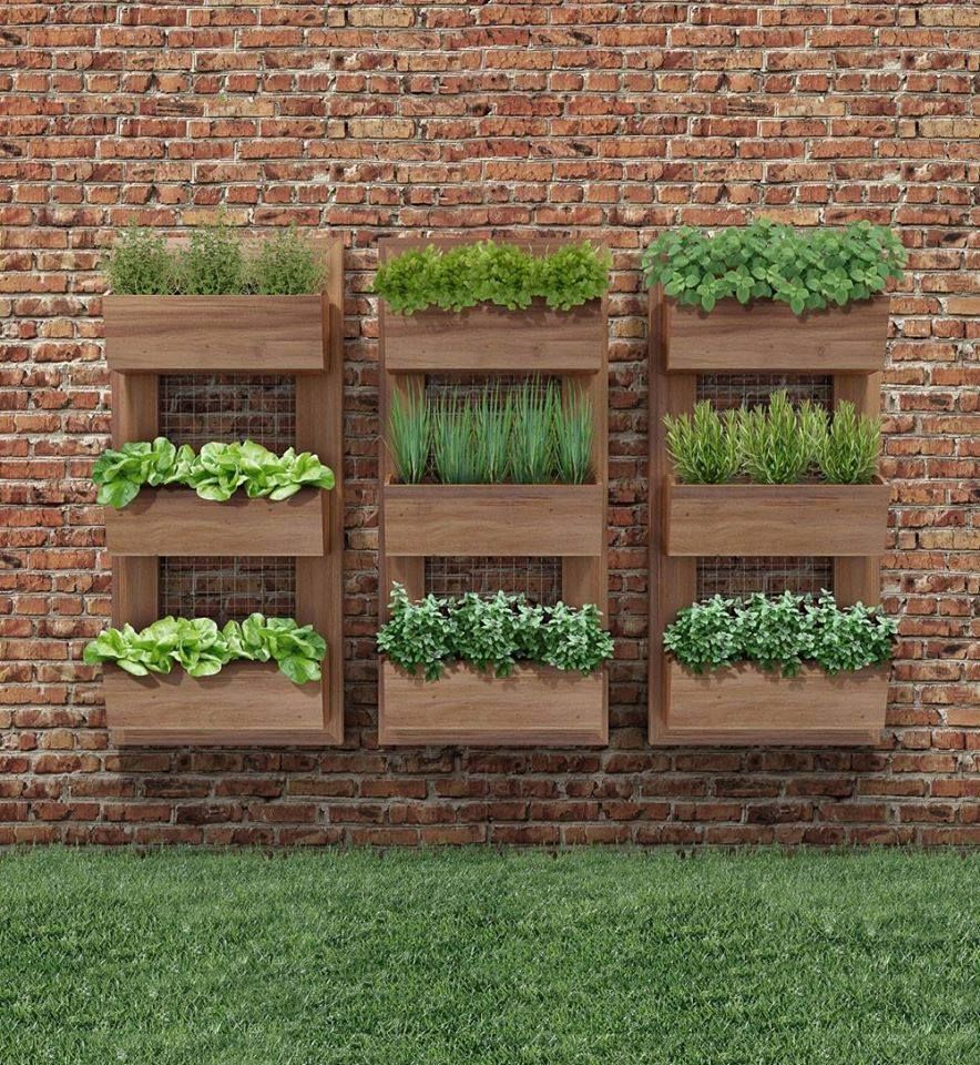 Herb Garden On Fence: Beautiful DIY Examples How To Make Lovely Vertical Garden