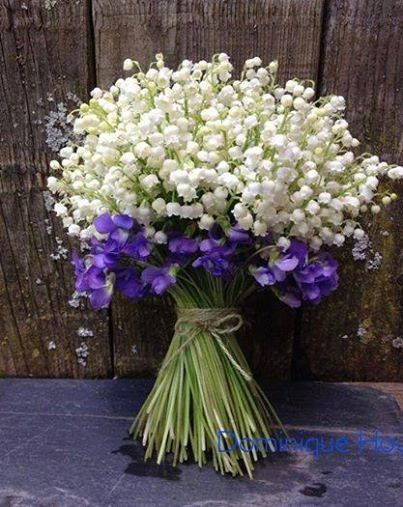 FLORES SECAS !! szép Pinterest Virágok - flores secas