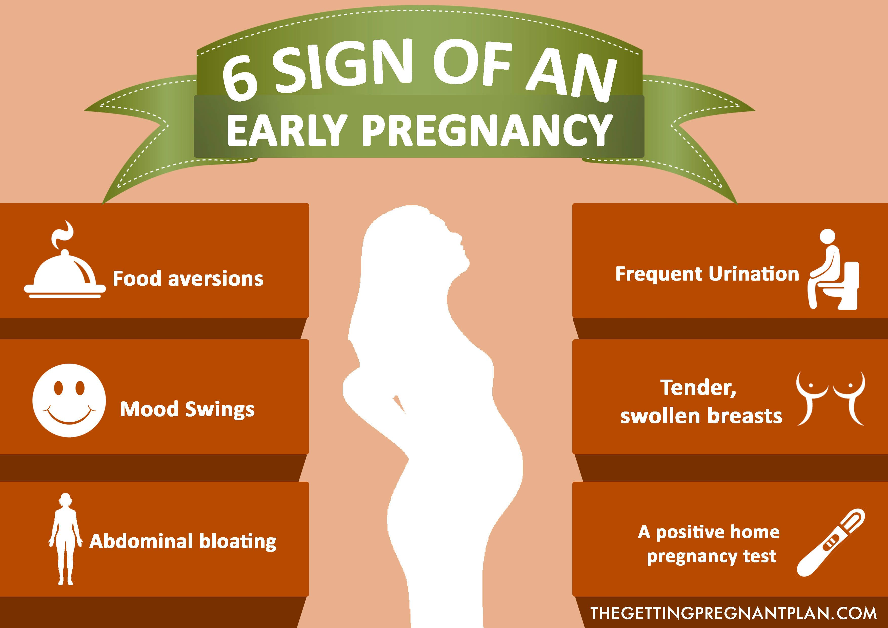 Pin on The Getting Pregnant Plan