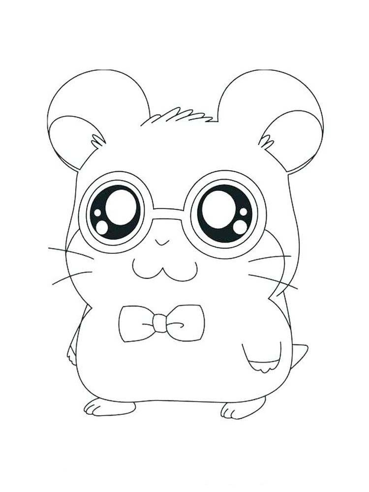 Dwarf Hamster Coloring Pages Hamsters Small Animals That For Some People Look Like Mice Ar Animal Coloring Pages Animal Coloring Books Pokemon Coloring Pages