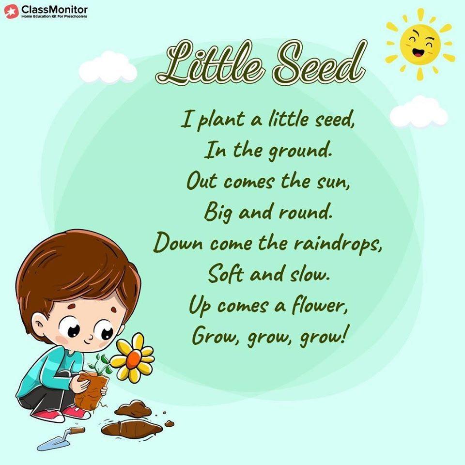 Little Seed Poem | Short poems for kids, Rhymes for kids ...