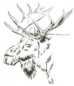 moose. But could it be embroidered?! #woodcarvingtoo