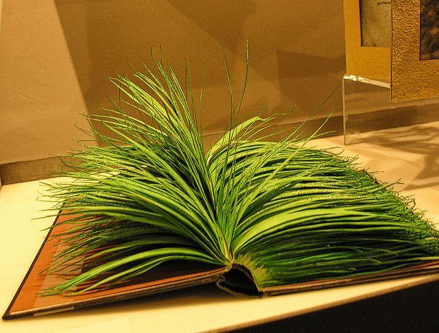 Art | アート | искусство | Arte | Kunst | Sculpture | 彫刻 | Skulptur | скульптура | Scultura | Escultura | Leaves of Grass (Eric Parker)