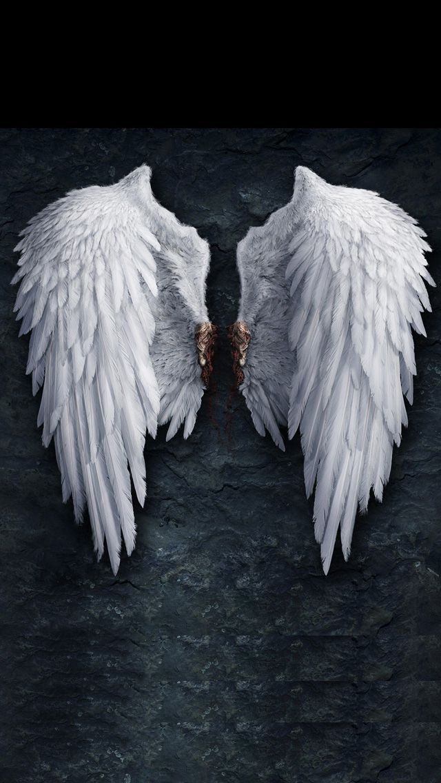Image For Angel Iphone 5 Wallpaper Hd 19 Angel Wallpaper Lucifer Wings Fallen Angel