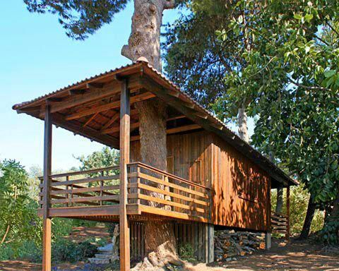 shipping container cabin-tree-Small Shipping container with wood siding to give it a natural log cabin appearance.