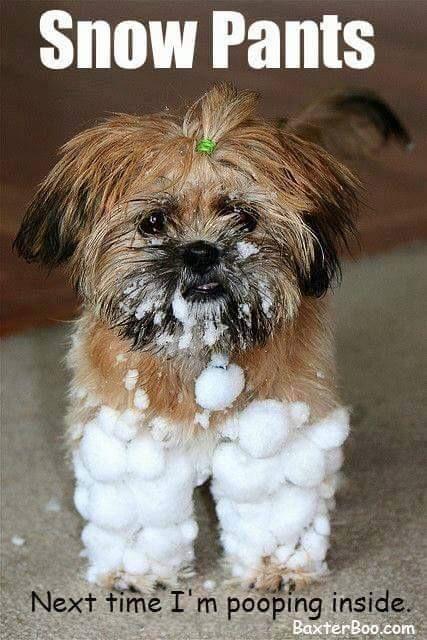 Snow Pants                                                                                                                                                      More