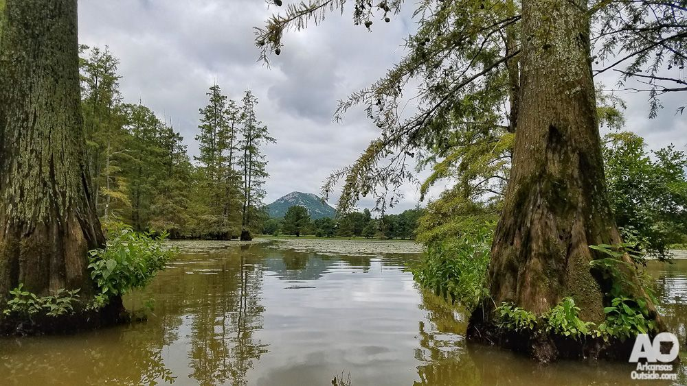 mountain laurel cabin rentals a river runs through it
