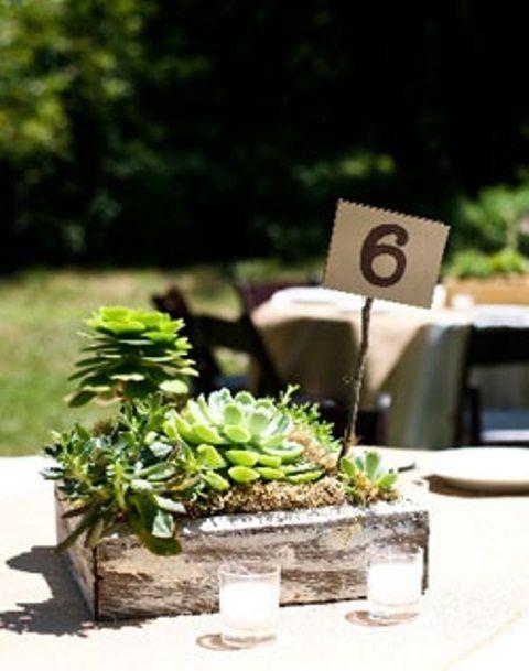 Nice 24 Succulent Centerpieces For Your Reception Table | Weddingomania