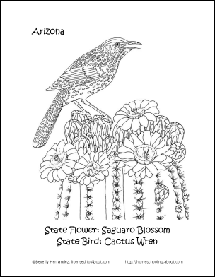 Arizona Wordsearch Crossword Puzzle and More Arizona State Bird