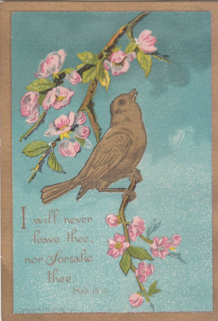 I Will Never Leave Thee Nor Forsake Thee Bird Religious Victorian Card C1880s | eBay