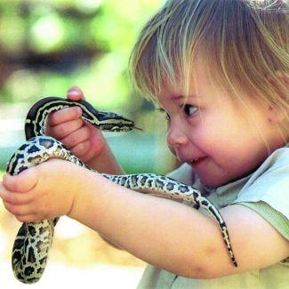 Go wild at the Australia Zoo  #airnzsunshine