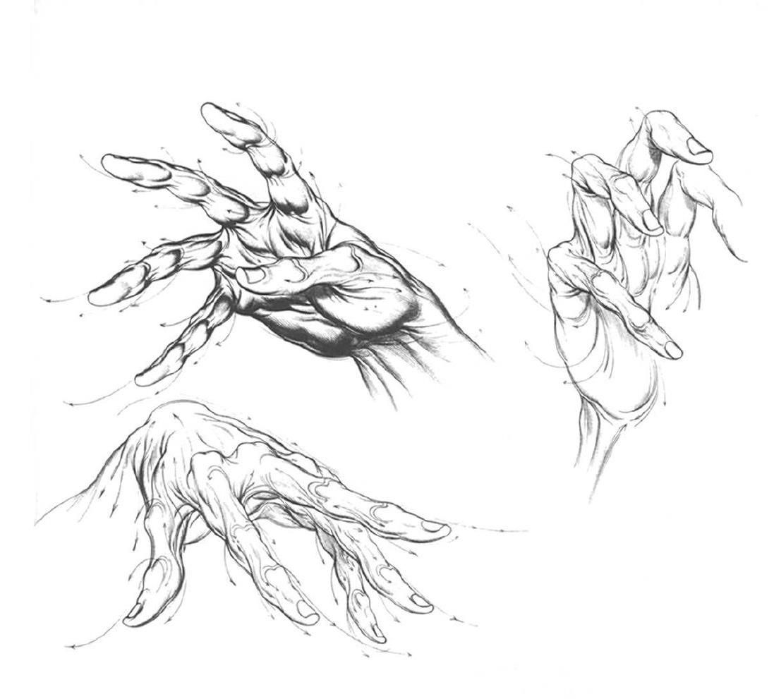 Burne Hogarth Drawing Dynamic Hands Drawings How To Draw