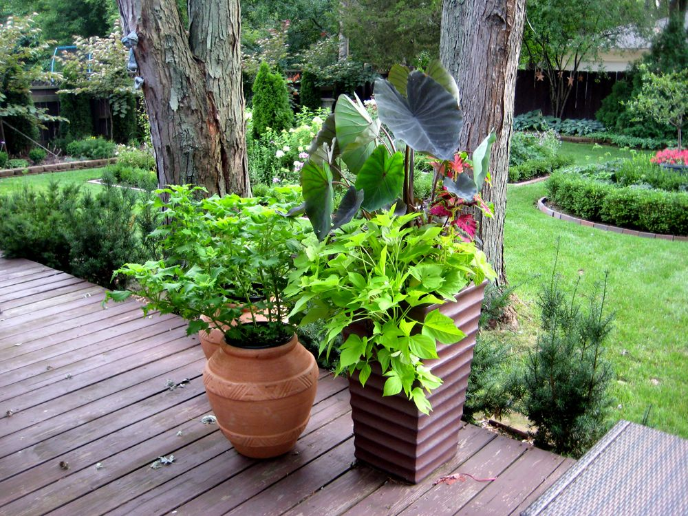 Garden Pot Ideas Gallery Best 16 Fascinating Garden Container Ideas Pictures Design  Gardens . Design Ideas