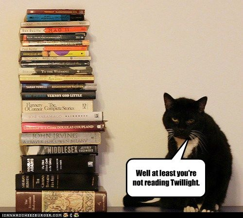 So Many Books So Little Time Cat Reading Funny Cat Memes Funny Cats