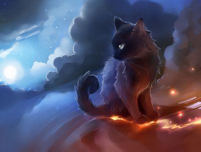 Anime Cat Black Desert Fire Smoke Cats Illustration Cute Cat